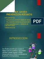 Dseguridadindustrialsenatrabajosrealizadoscopiadeaerosolesgasesyvapores 090917203001 Phpapp01[1]