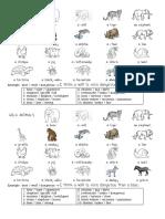 comparing-animals.pdf