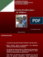Identificación Dactiloscopica en Mellizos Univitelinos