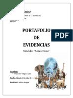 -PORTAFOLIO-UDP-2011burgos