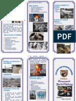 TRITPTICO - Los Desastres Tecnológicos