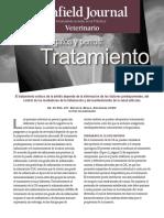 AGyPT_final.pdf