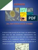 HONGOS-Generalidades-metabolismo-reproduccion-clasificacion.pdf