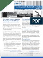 Arnstein & Lehr LLP Commercial Solutions Newsletter Summer 2010