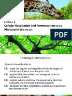 Cellular Respiration and Photosyntesis