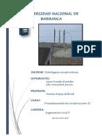 Patologias Constructivas-Informe PDF