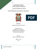 monografia-FARMACOLOGIA-GESTACIONAL-1-presentar (1).docx