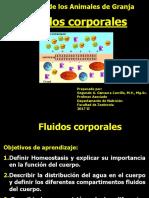 1-3_PPT_FLUIDOS_CORPORALES_2017_II
