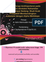 JURNAL AMH Lampungfinal