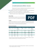 PHQ-2.pdf