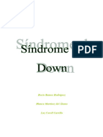 leer  sindrome down.docx