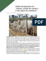 Carne Saludable Enriquecida Con Vitamina E_ Selenio_ Aceite de Canola y Con Niveles Más Bajos de Colesterol