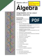 BOOK_Mi libro de Apuntes Algebra febrero 2012.pdf