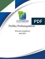 Perfil profesiograìfico_Final_20170421.pdf