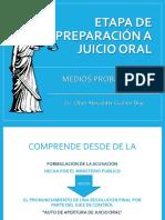 Etapa de preparación a Juicio Oral.pdf