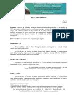 Modelo Artigo (6)