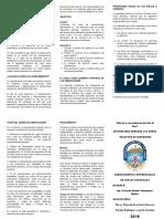 ASENTAMIENTOS-DIFERENCIALES.docx