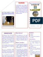 167030147-Triptico-Huevo-Saltarin.docx