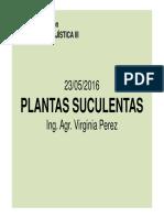 SUCULENTAS1