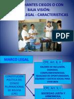 002-Caracteristicas y Clasificacion - Discapacidad Visual