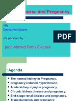 Renal Disease & Pregnancy