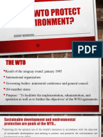 Does WTO Protect Environment?