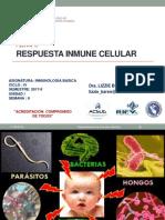 Tema 6. Rpta Inmunce Celular 2017