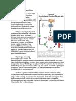 Regulasi Sekresi Hormon Tiroid