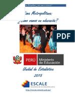 Perfil Lima Metropolitana (1).pdf
