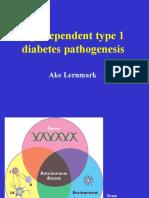 3 Age Dependent Type 1 Diabetes Pa Tho Genesis