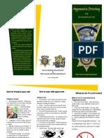 pima county sherrrifs brochure