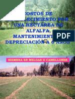 Costos de Produccion de Alfalfa