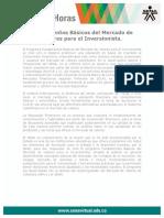 Fundamentos Basicos Mercado Valores Inversionista
