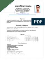 Robert Nina Saldaña, Curriculum 2016