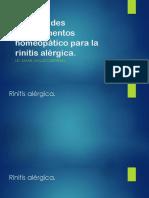Los Grandes Medicamentos Homeopático Para La Rinitis Alérgica