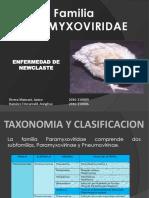 Familia Paramyxoviridae1