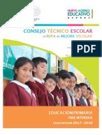 FaseInt CTE 2017-2018 Primaria V3