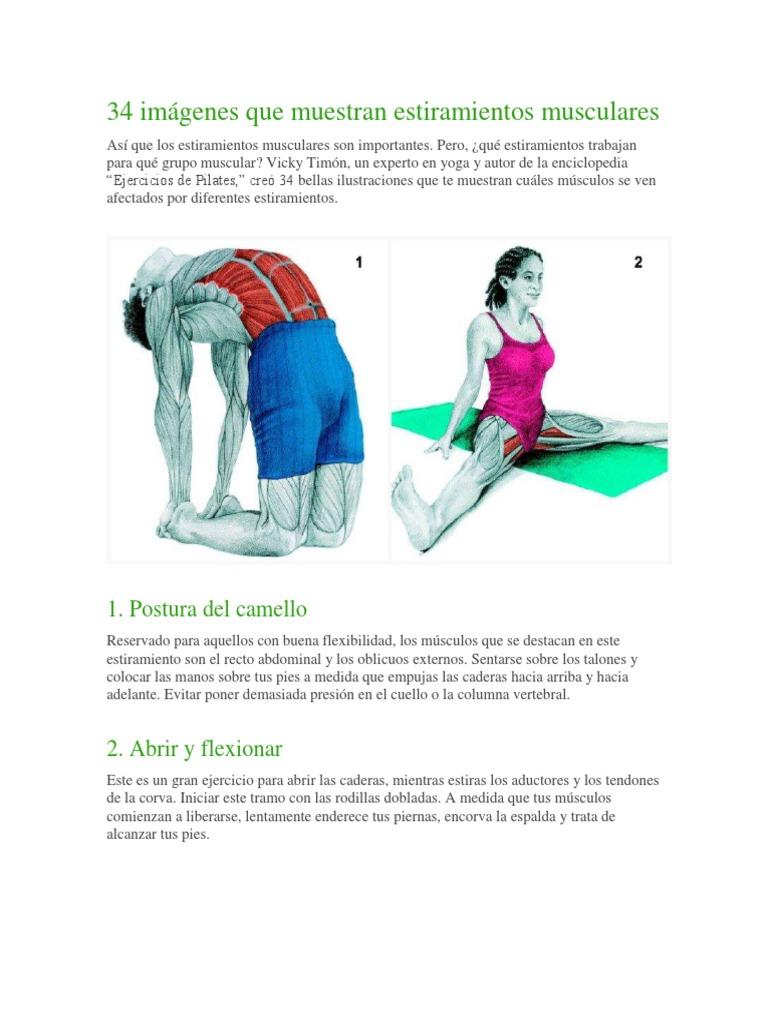 34 Imágenes Que Muestran Estiramientos Musculares