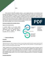 CLASES-PRIMERA-PRUEBA-SOCIEDAD.docx