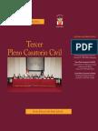 III+Pleno+Casatorio+Civil.pdf