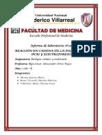 INFORME N°10 BIOLOGÍA.docx