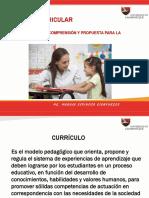 17 teoria curricular.pdf