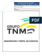 descripción de puestos tnm