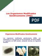 Transgénicos 2.pdf