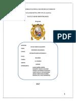 360830148-informe-entorno-saludable
