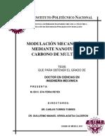 Modulacion Mecano-optica Mediante Nanotubos