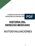 Derecho Mexicano Vii - Betzaida Garcia Bedolla