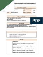 Formato de Silabogsm Verano Escolar y Semianual2017