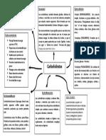 carbohidatos.1.pdf