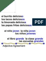 adjectiveagreement